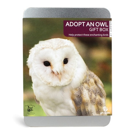 Adopt An Owl Gift Box