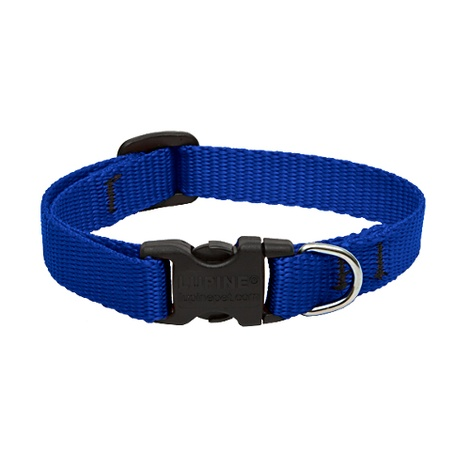 "1"" Width Blue Lupine Dog Collar"