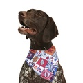 Cartoon Dog Bandana 3