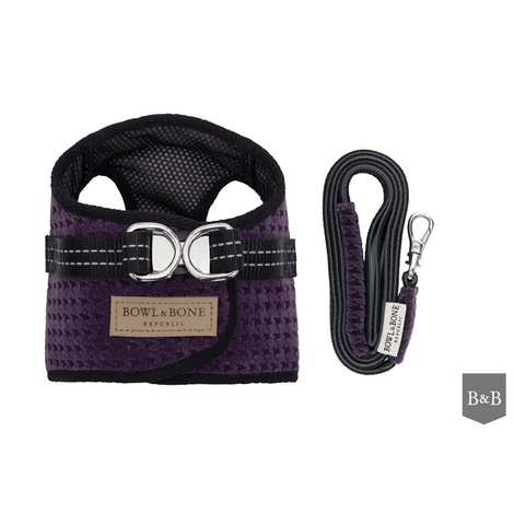 Soho Harness & Lead Set - Purple