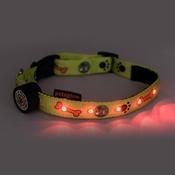 PetsGlow - Paws & Bones LED Dog Collar - Green