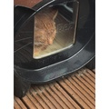 DezRez Outdoor Cat House - Chocolate Brown 3