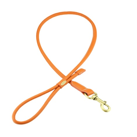Sitwell Tubular Dog Lead – Orange