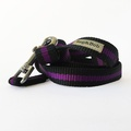 Purple Dog Lead 2