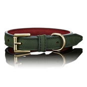 Paws with Opulence - Limited Edition Luxe Green Dog Collar