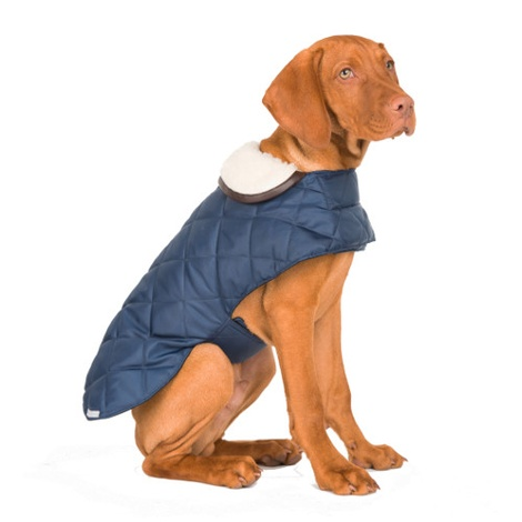 Navy Quilted Waterproof Dog Coat
