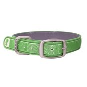Dublin Dog - All Style No Stink Waterproof Dog Collar