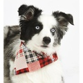 Patchwork Pete Dog Bandana 2