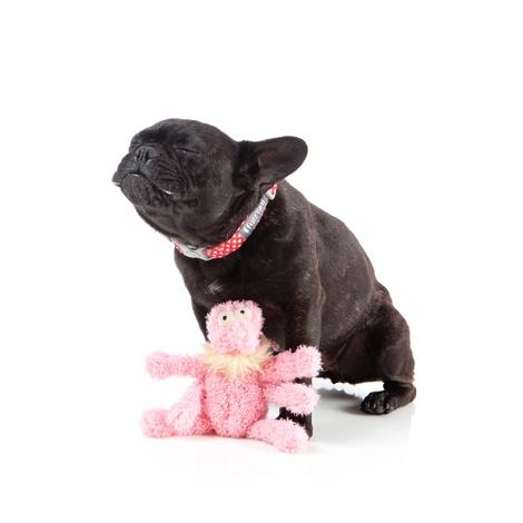 Scratchette the Flea Plush Dog Toy - Pink 3