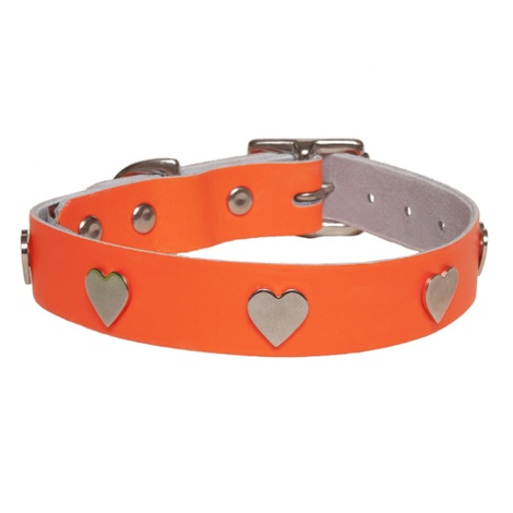 Galaxy Dog Collar - Orange, Nickel Hearts
