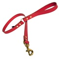 Plain Leather Dog Lead - Red with Brass