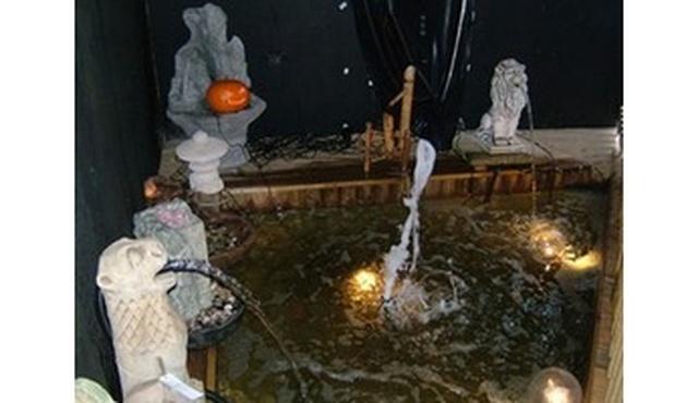 Maidenhead Aquatics 2