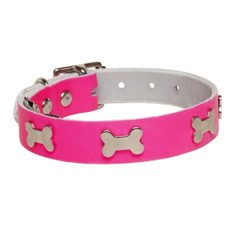 Galaxy Dog Collar - Pink, Nickel Bones