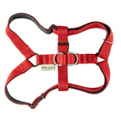 Bowl&Bone Republic - Active Dog Harness - Red