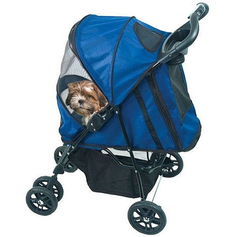 Pet Buggy in Blue