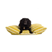 The Lounging Hound - Signature Cotton Dog Bed - Ochre