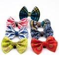 Kiwi Shweshwe Dog Bow Tie 4