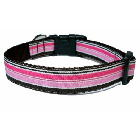 Neopolitan Stripe Dog Collar