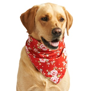 Red Vintage Primrose Dog Bandana
