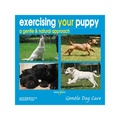 Exercising your Puppy, A Gentle & Natural Approach