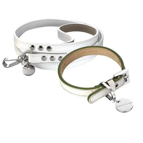 Polo Club Dog Collar & Lead Set - Green Edging