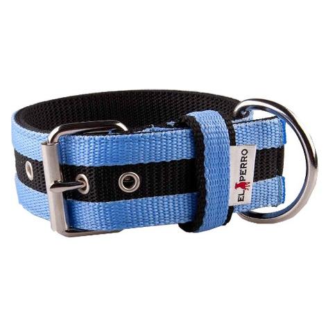 Juicy Strip Dog Collar - Baby Blue