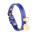 Sea Blue and Gold Stitch Leather Collar