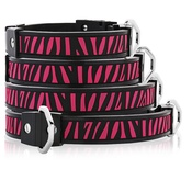 Cool Dog Club - Cool Dog K9 Striker MK1 Zebra Dog Collar