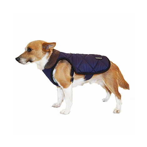 Chelsea Winter Warmer Dog Coat - Blue