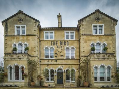 The Bird in Bath, Somerset, Bath