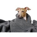 Double Fleece Dog Blanket - Charcoal 2