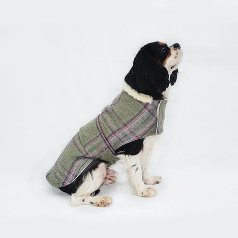 Beau Tweed Dog Coat