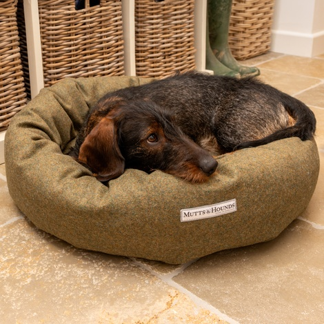 Forest Green Tweed Donut Bed 8