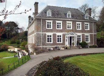 Dog Friendly Devon Hotels Petspyjamas