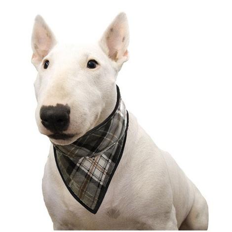 Dog Cooling Bandana in Scottish Grey