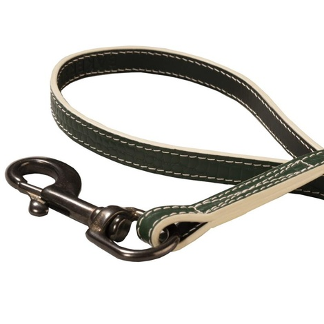 Paris Croc Dog Lead – Forest Green & Stone 2