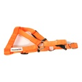Bold Dog Harness – Orange 2