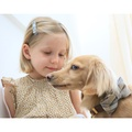 Sand Shetland Wool Dog Bow Tie 3