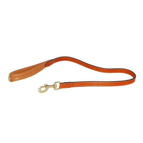Luxury Leather Dog Lead with Padded Handle – London Ta