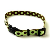 Yellow Dog - Green/Brown Polka Collar