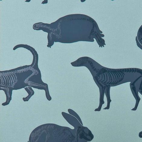 Animal Magic Wallpaper 3