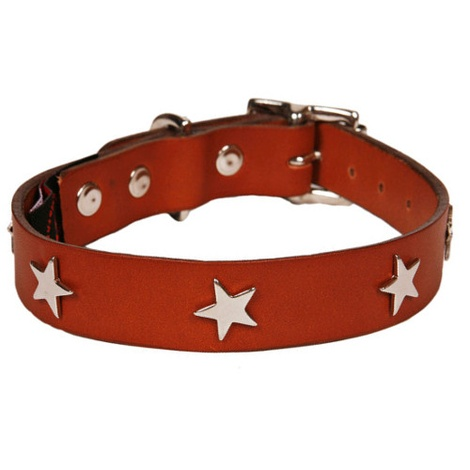 Classic Leather Dog Collar - Tan with Stars