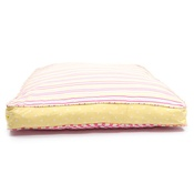 Lords & Labradors - Swappers Refreshers - Daisy, Candy Stripe & Yellow