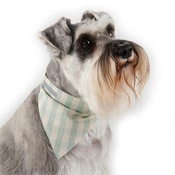 Mutts & Hounds - Mint Check Cotton Dog Neckerchief