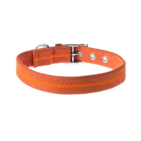 Clementine Signature Range Dog Collar 2
