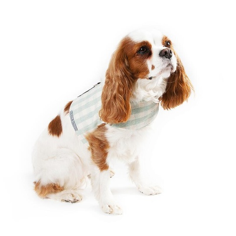 Mint Check Cotton Dog Harness 3