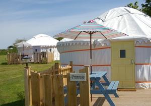 Primrose Yurt, Cornwall 3