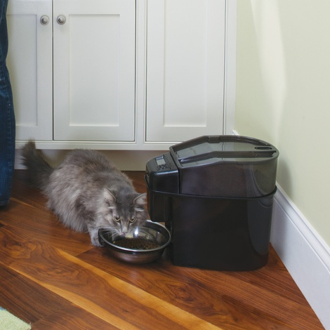 Healthy Pet Simply Feed™ Digital Pet Feeder 5