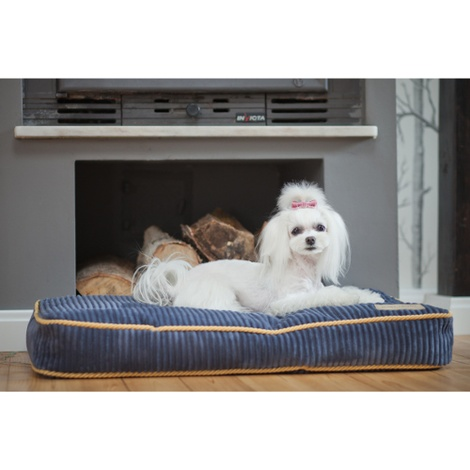 Sapphire Deco Dog Cushion 4