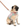 Macaroon Check Dog Harness 2